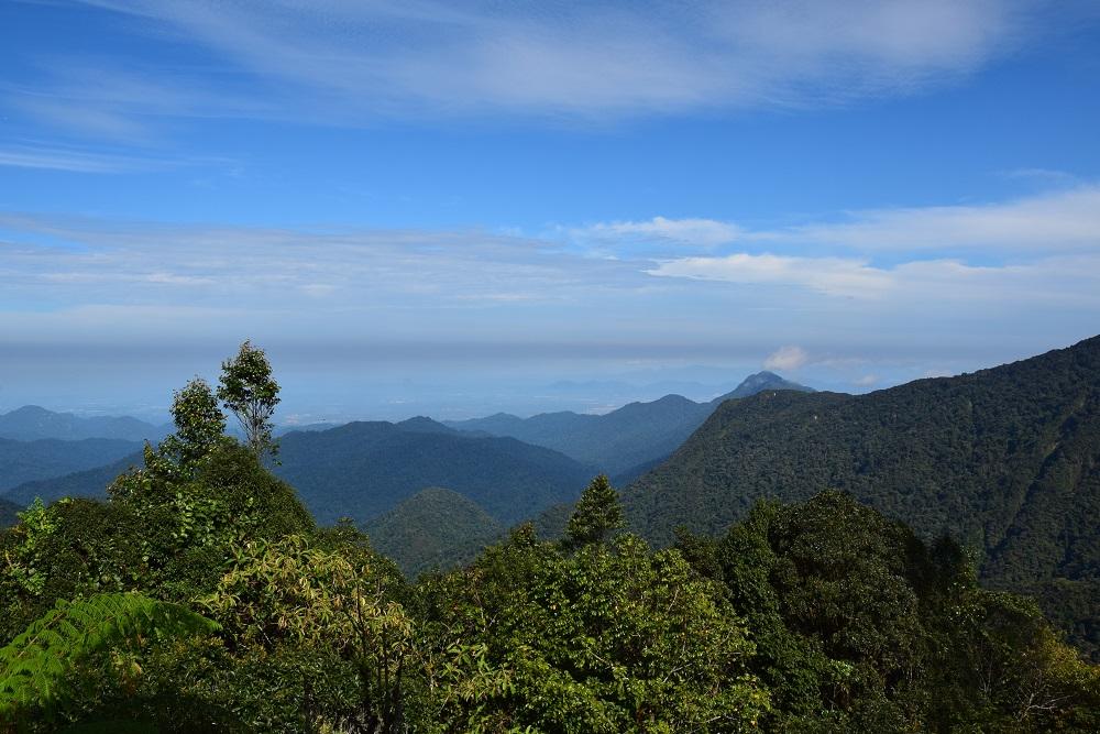 vue_gunung_brinchang